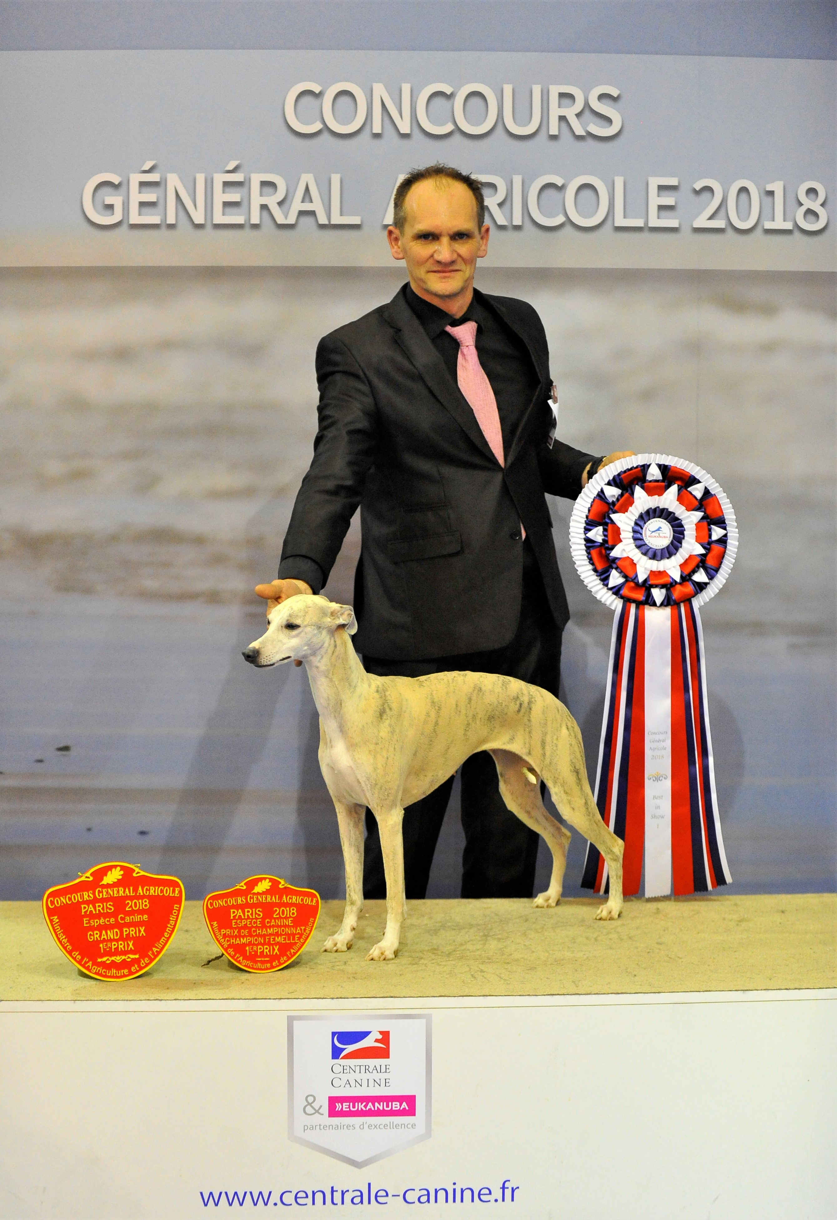 centrale canine concours