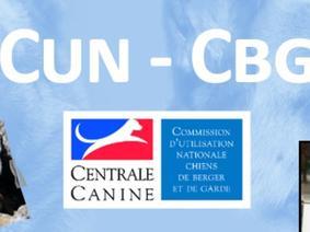 Cun Cbg Calendrier 2021 Actualités   Société Centrale Canine