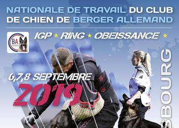 Club Du Chien De Berger Allemand Société Centrale Canine
