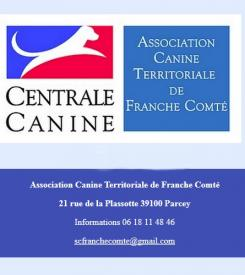 centrale canine 82