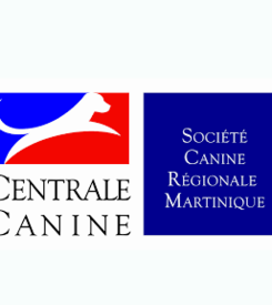 centrale canine 974