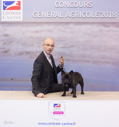 centrale canine indre