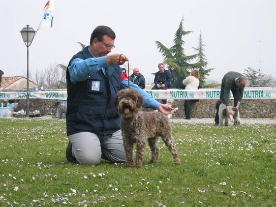 centrale canine grenoble